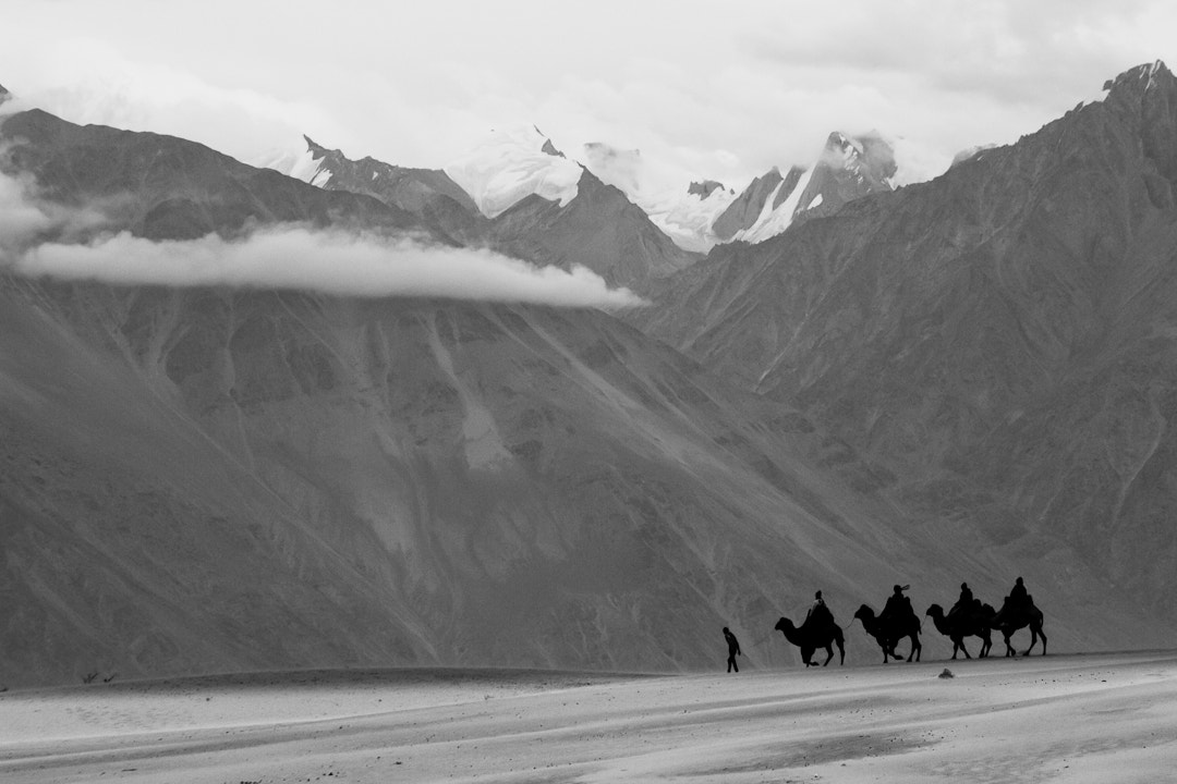 Photograph welcome to Nubra valley... by Amod Sane on 500px