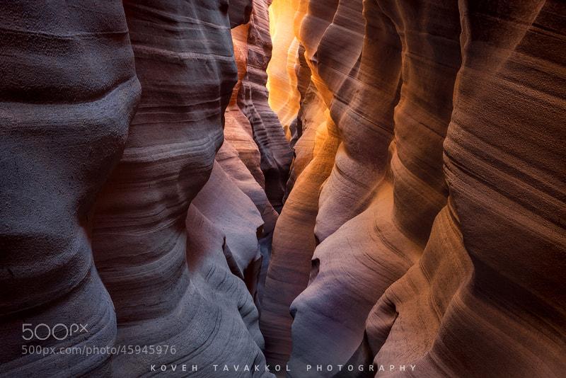 Photograph Labyrinth by Koveh Tavakkol on 500px