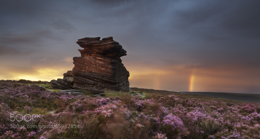 Photograph Mother cap madness by Terry Gibbins on 500px