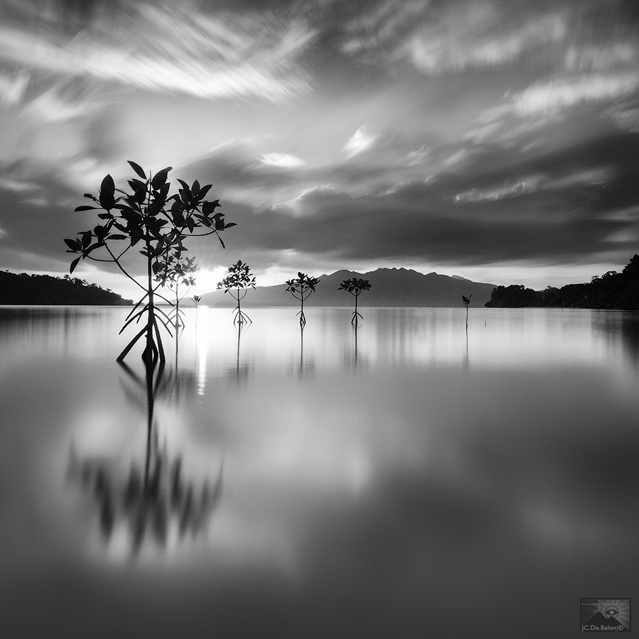 Photograph Silence by Jay Cee de Belen on 500px