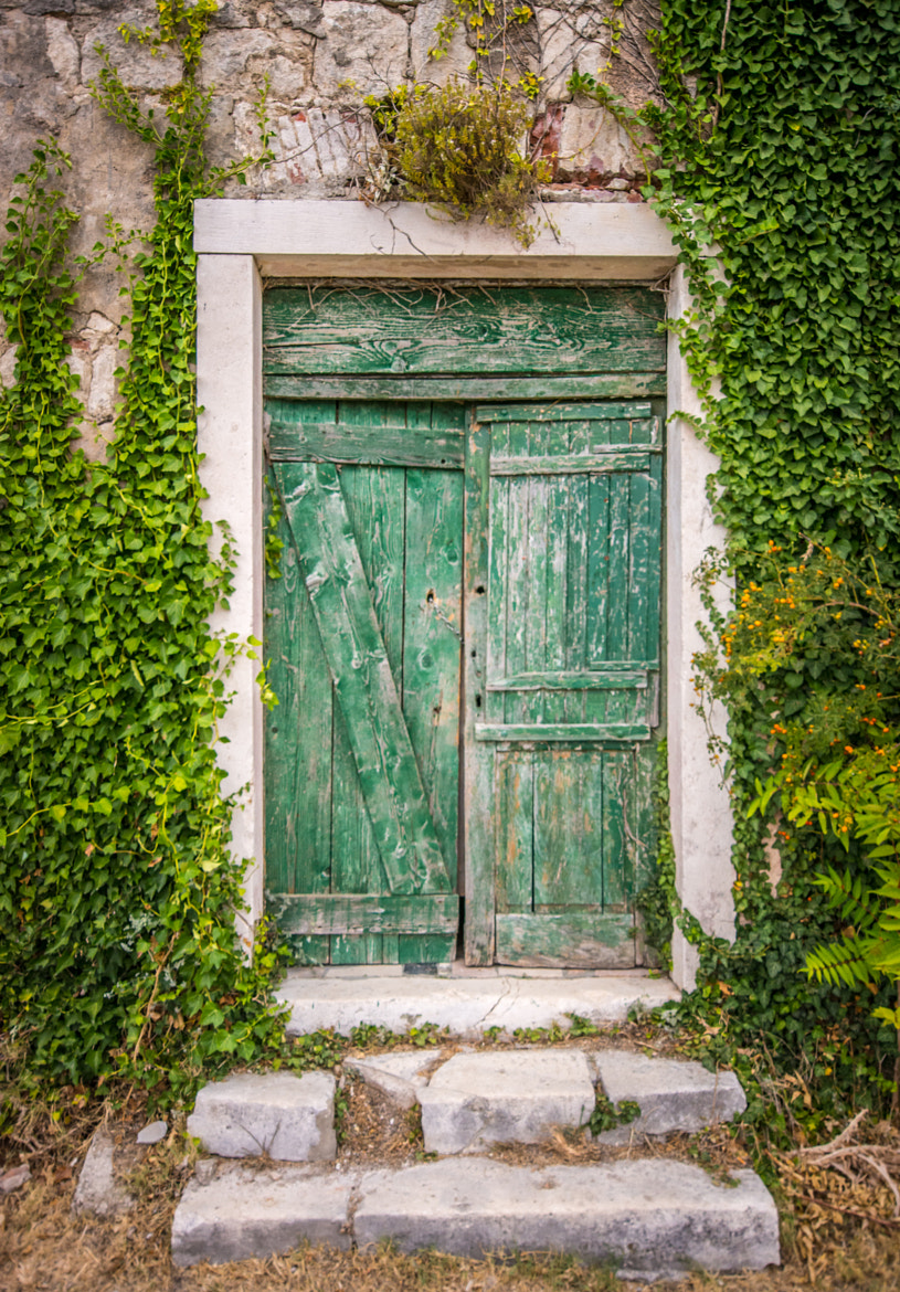 Photograph The Green Door by Stevan Tontich on 500px