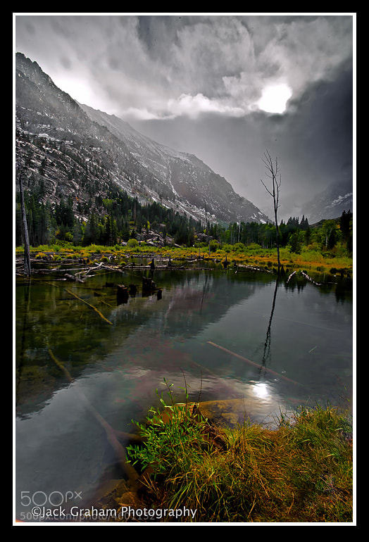 Storm coming down in Lindy Canyon California(Eastern Sierra0