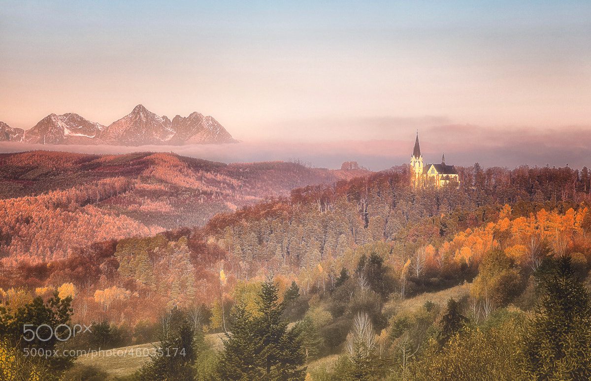 Photograph Untitled by stanislav hricko on 500px