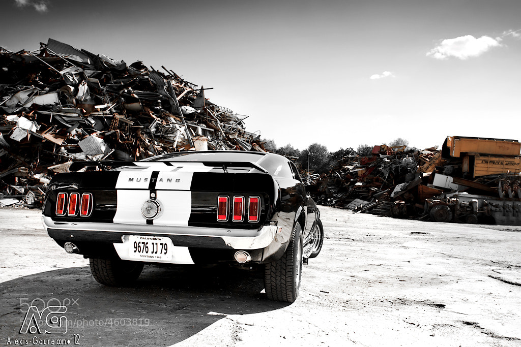 Photograph Mustang by Alexis Goure on 500px