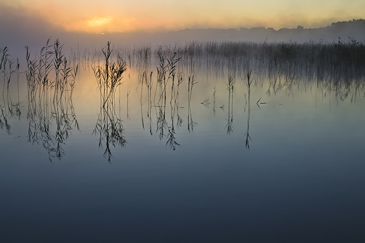 Photograph Beginning of the Day by Rimantas Bikulčius on 500px