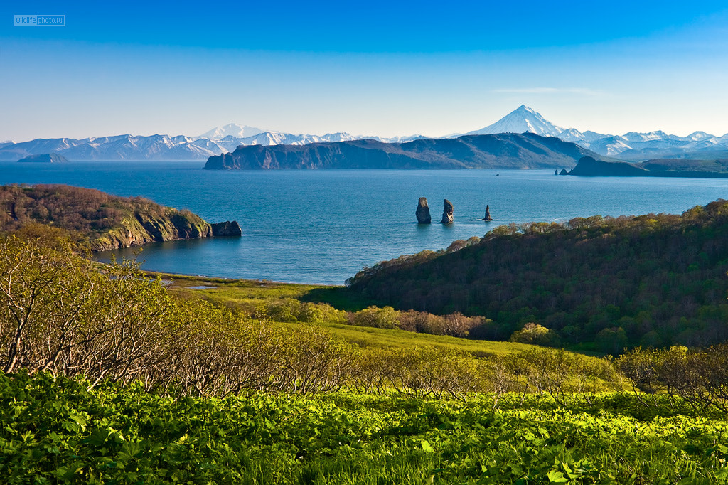 Photograph Kamchatka landscape by Sergey Krasnoshchekov on 500px