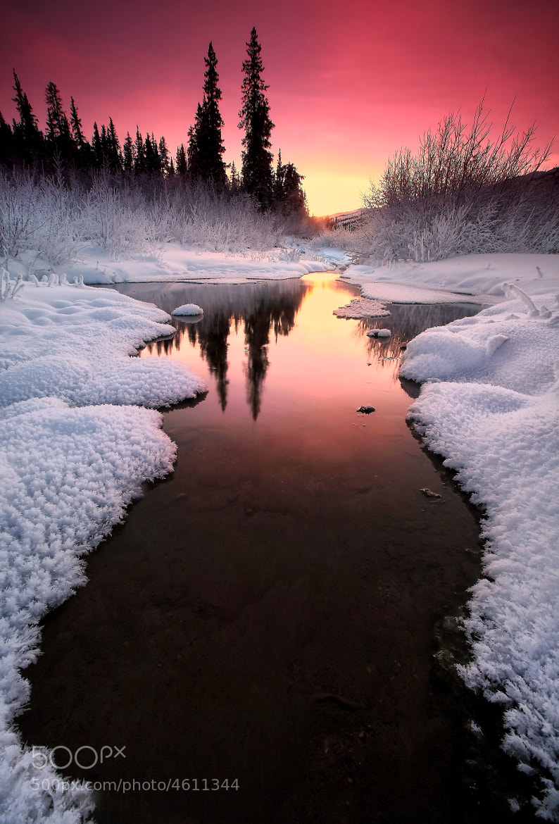 Photograph Winters Tones II by Ron Perkins on 500px