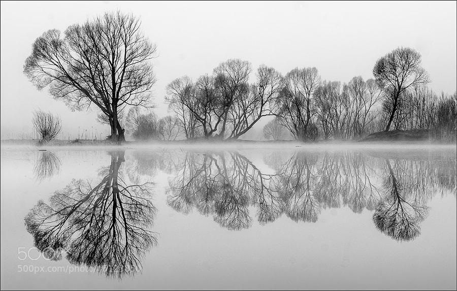 Photograph SW by Friedrich Beren on 500px