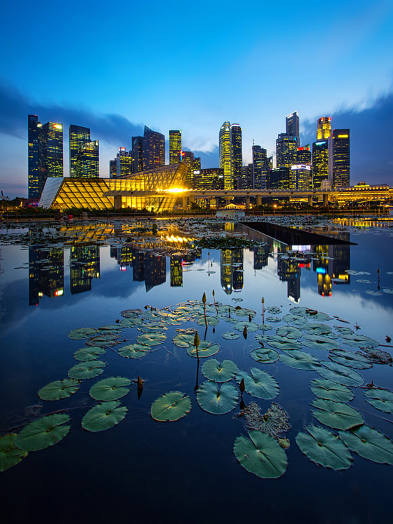 Photograph Lotus Islands by WK Cheoh on 500px