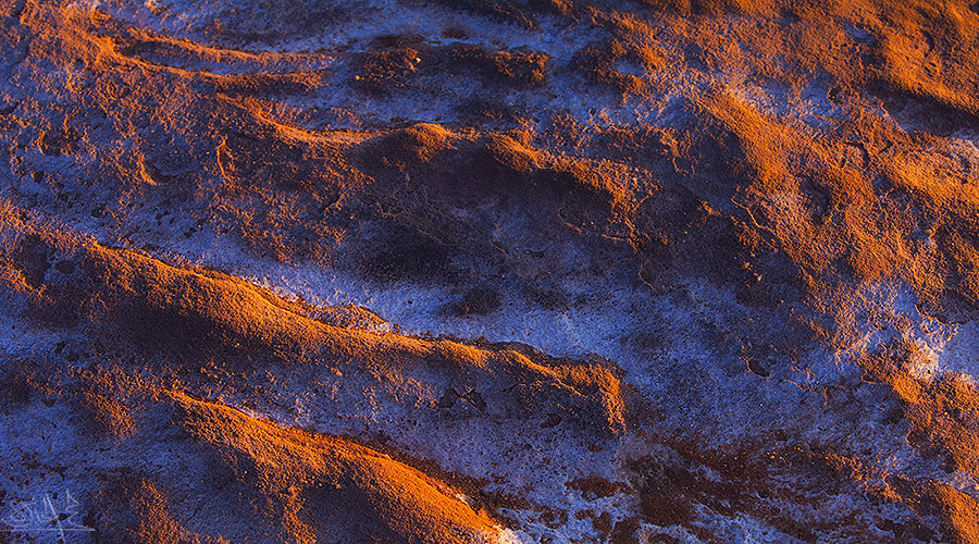 Photograph Abstract from Ground by Mohamed Al Jaberi on 500px