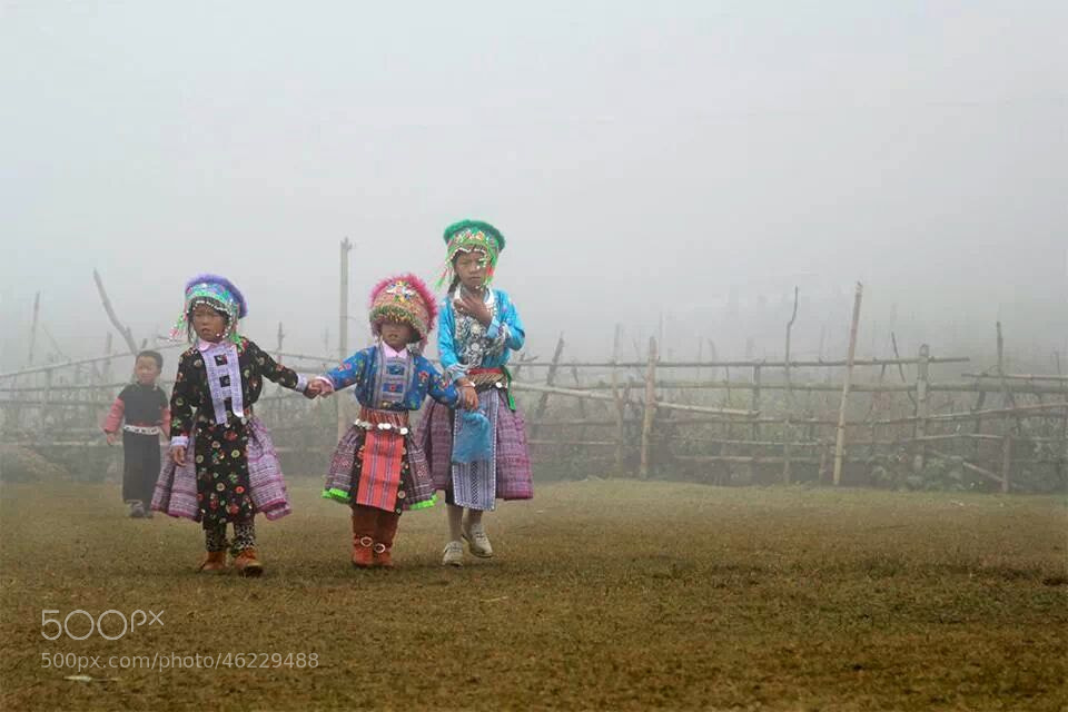 Photograph Untitled by Tuan Nguyen Anh on 500px
