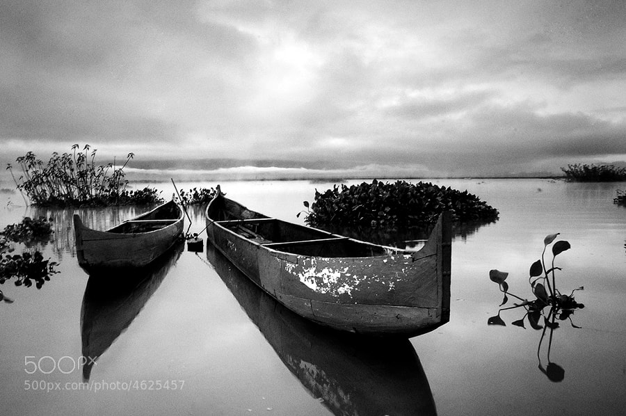 Photograph Laid to Rest by Malvin Mark on 500px