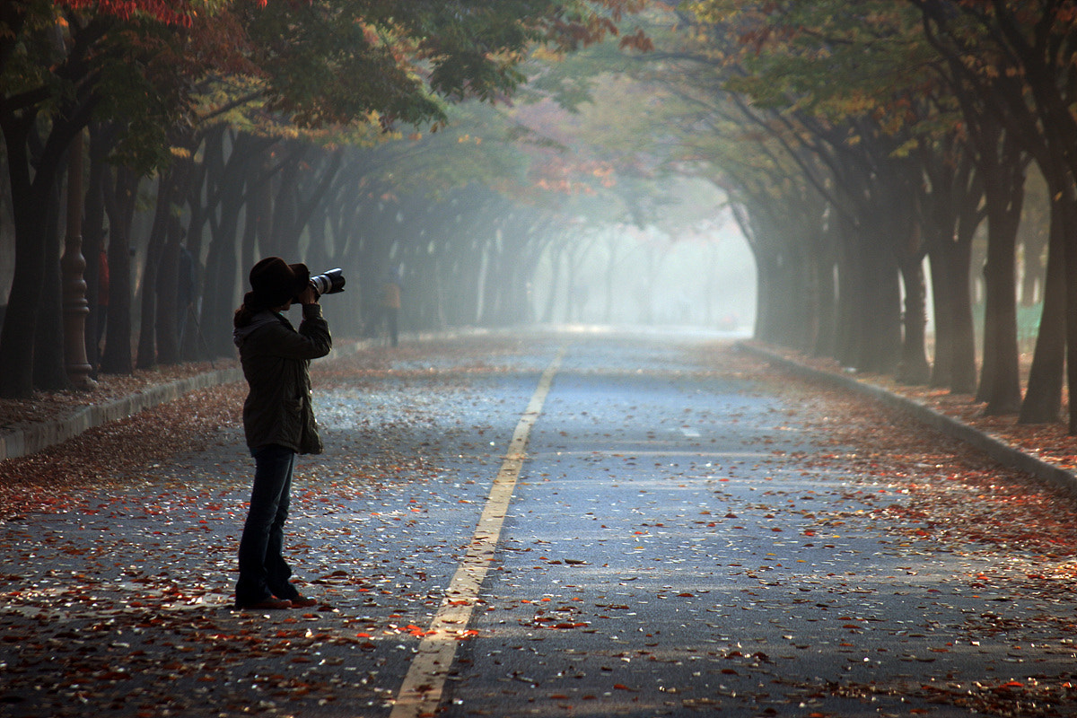 Photograph Taking the fall by Kyoung Jin LEE on 500px