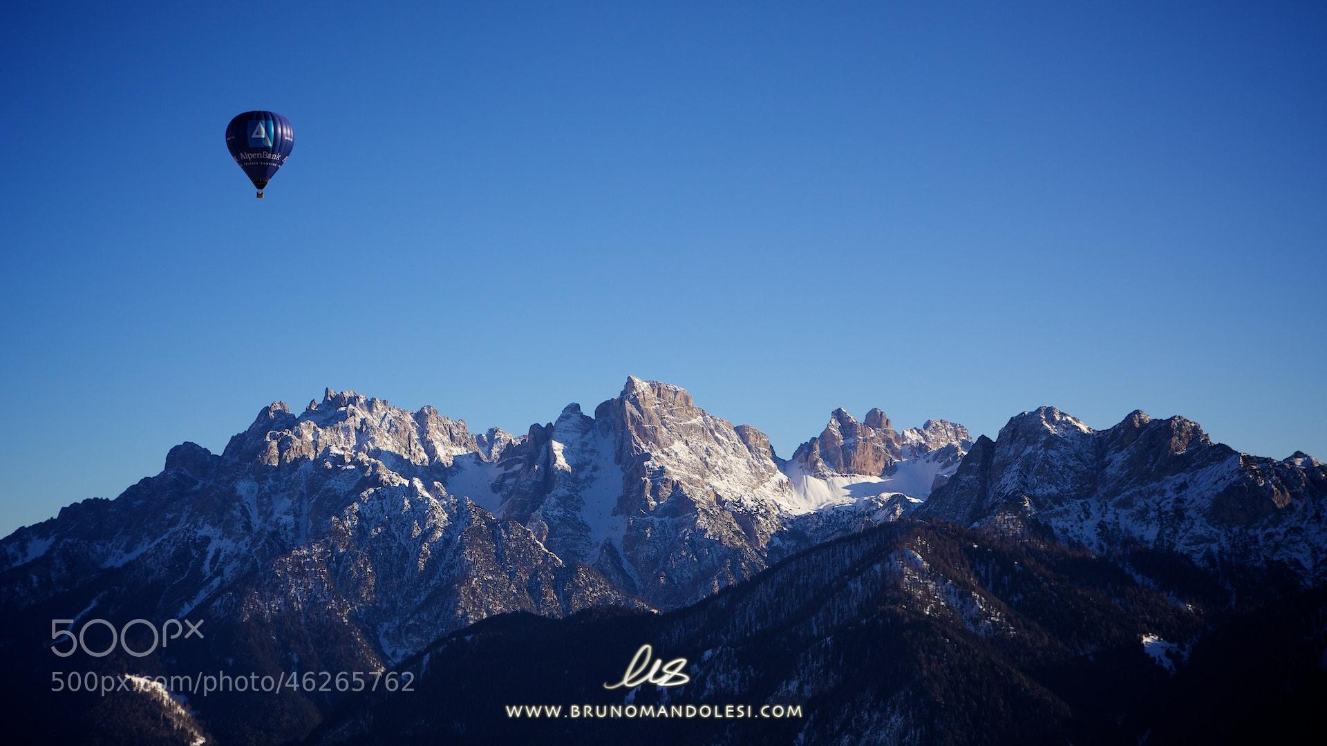 Photograph Flying high by bruno mandolesi on 500px