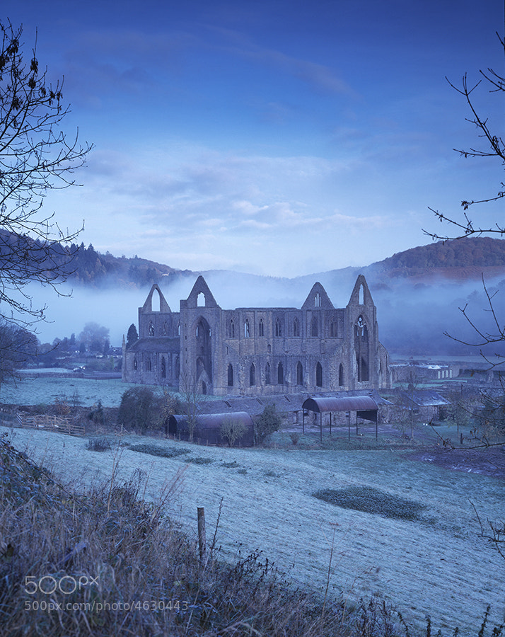 TINTERN ABBEY IN THE WYE VALLEY AT DAWN IN WINTER MIST AND FROST MONMOUTHSHIRE SOUTH WALES UK