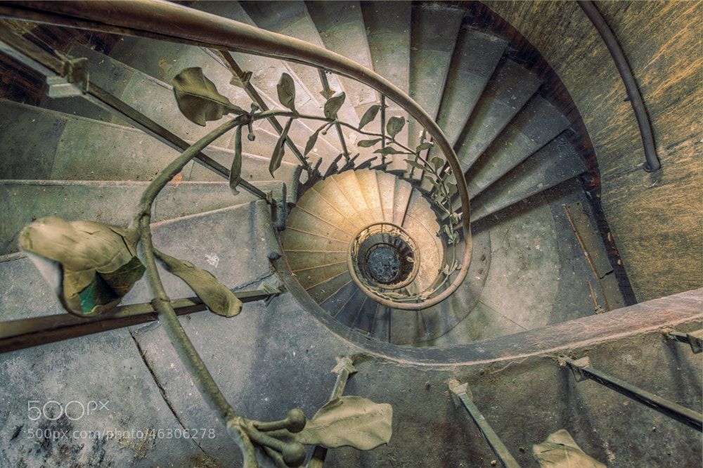 Photograph golden staircase by Christian Richter on 500px