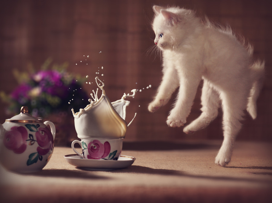 Oops~! by Hiep Ng on 500px.com