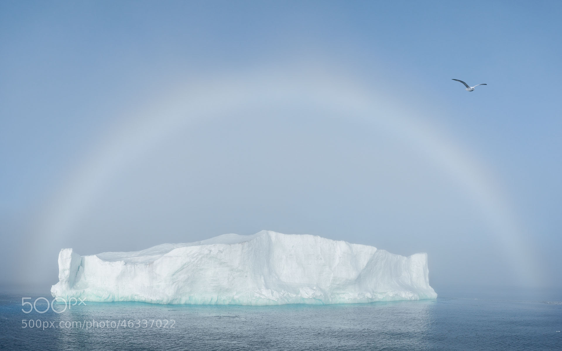 Photograph High Arctic in High Key by Mike Reyfman on 500px