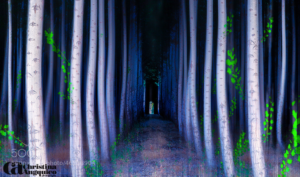 Photograph Tunnels End by Christina Angquico on 500px