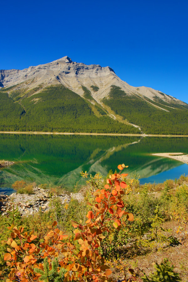 Spray Lakes in Fall