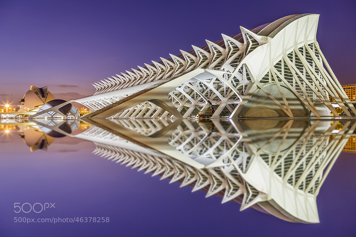 Photograph City of arts (II) by Carlos Luque on 500px