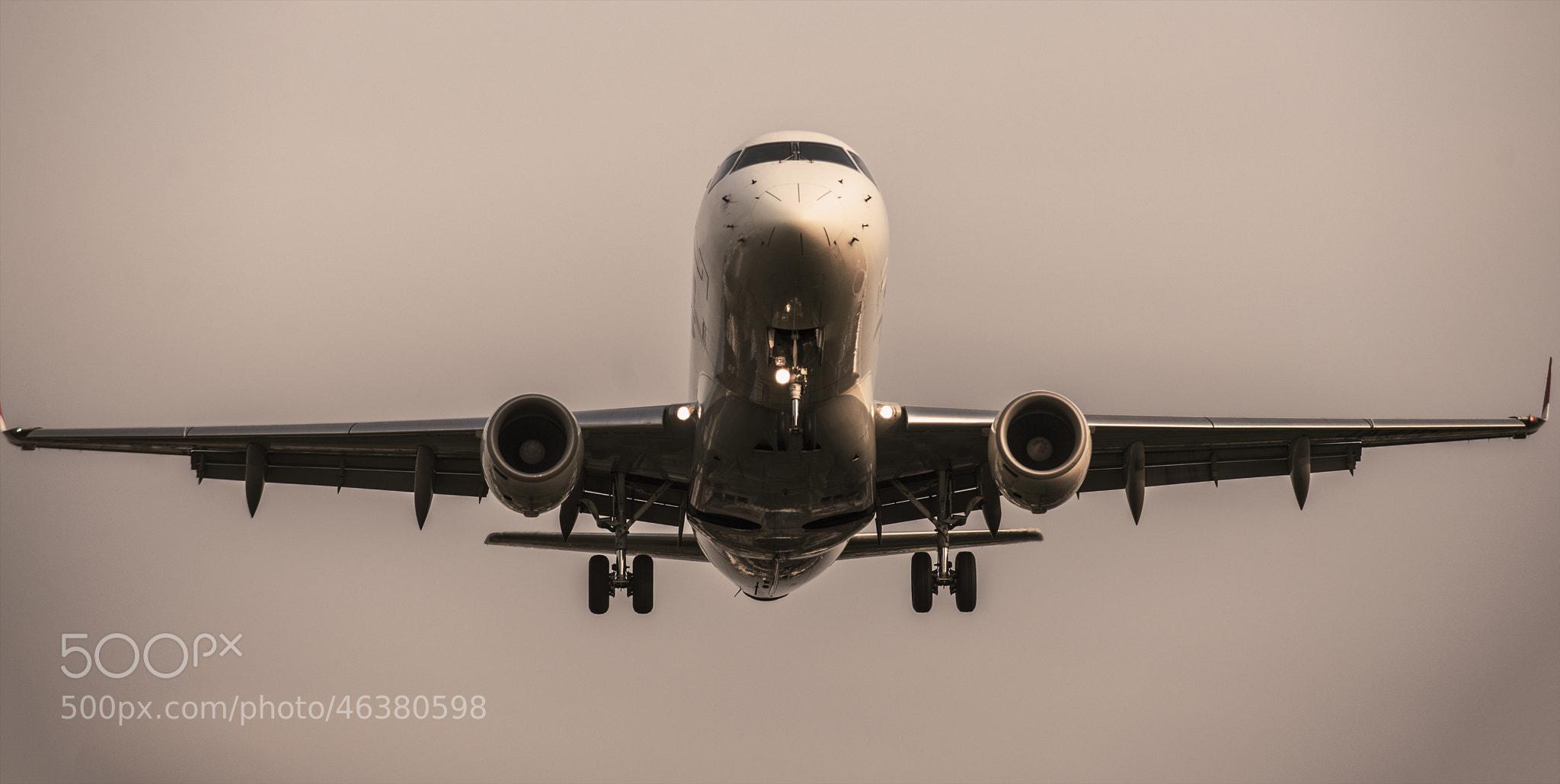 Photograph In Flight by hugh dornan on 500px