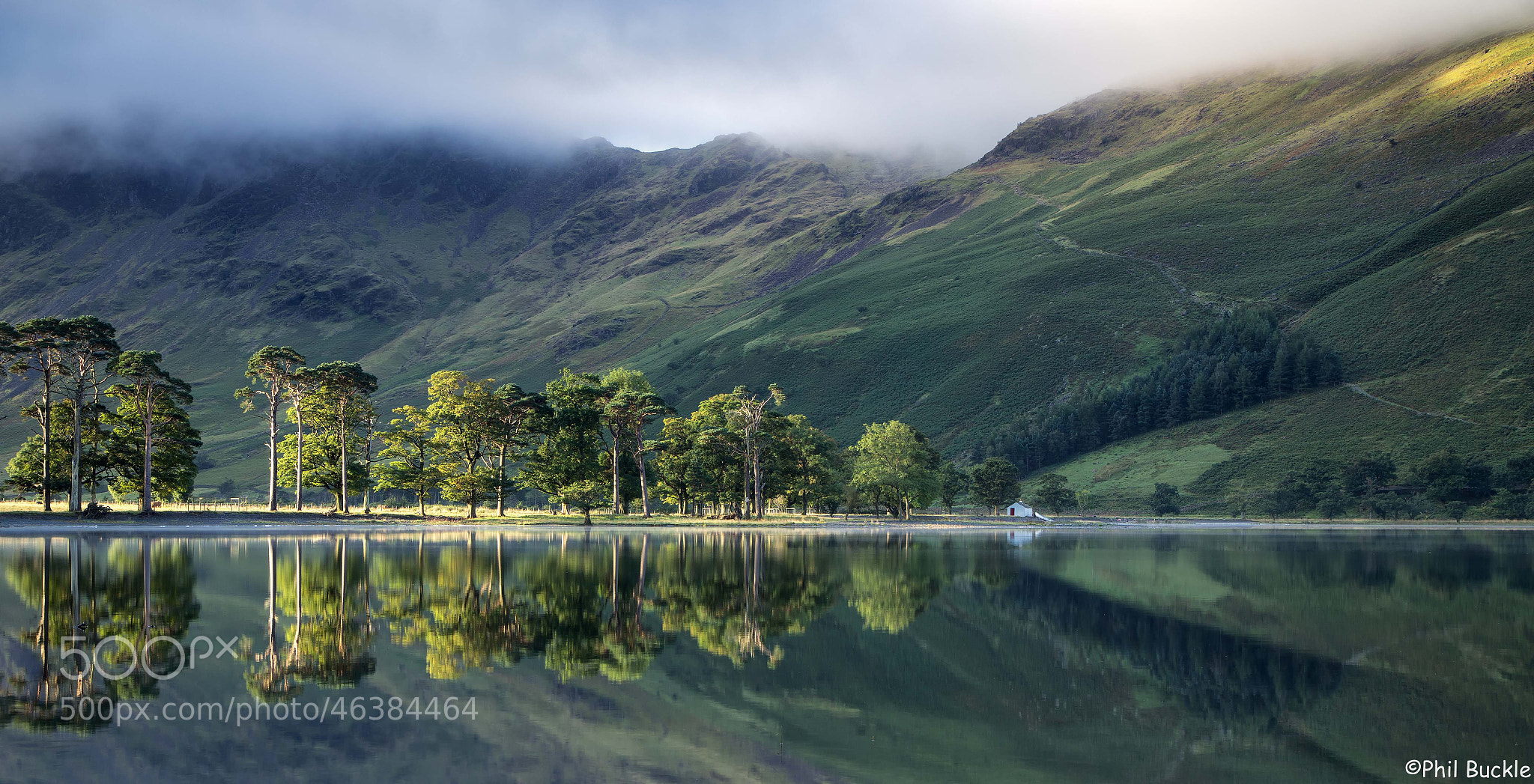 Photograph Buttermere Pines by Phil Buckle on 500px