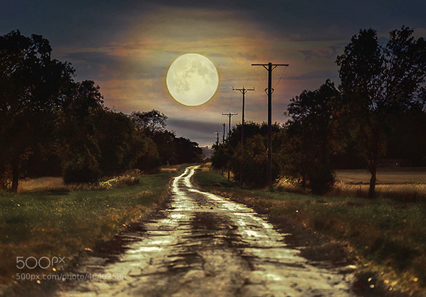 Photograph moon road by Piotr J on 500px