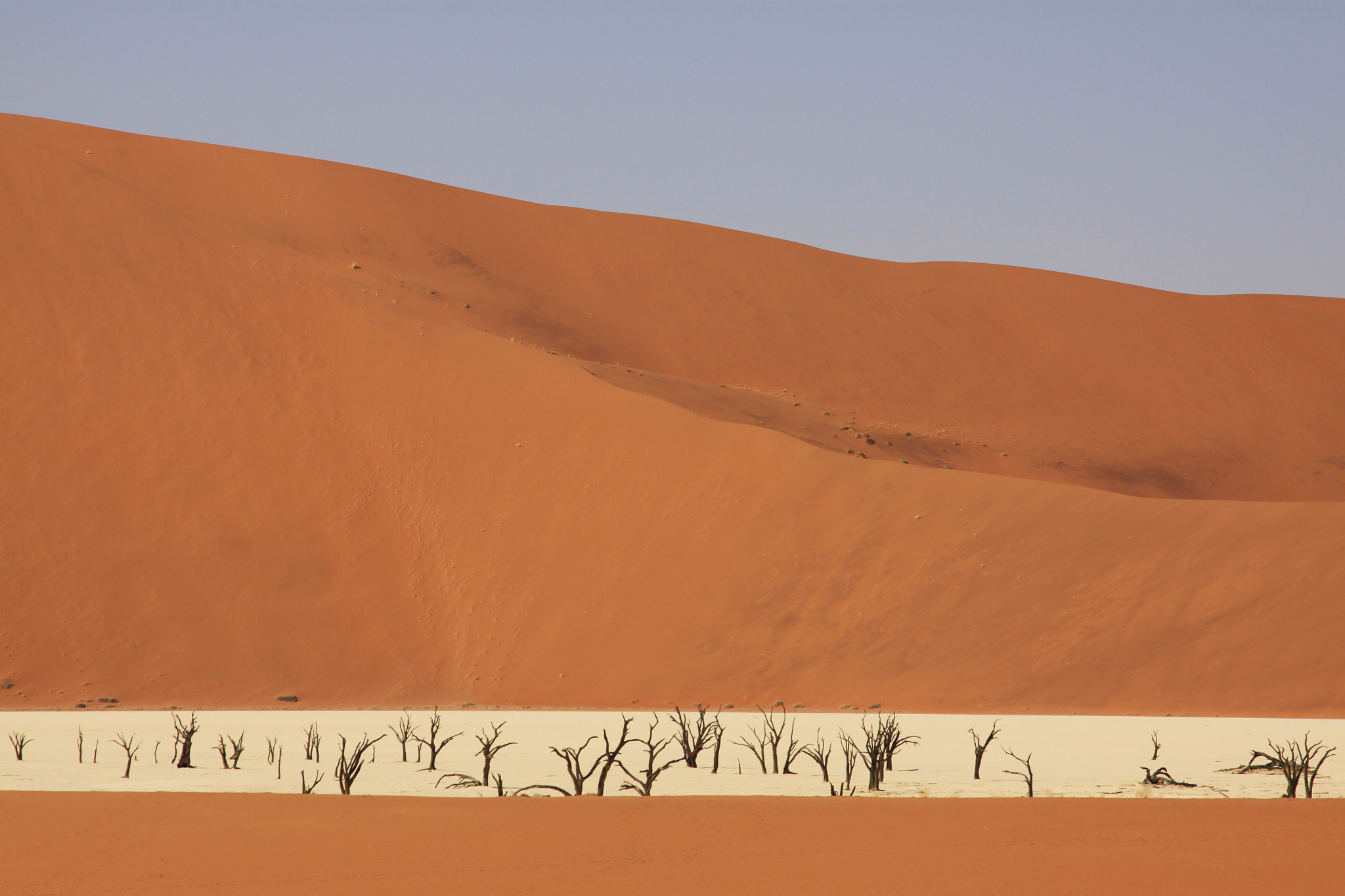 Photograph DEAD VLEI NAMIBIA by Alain Delvoye on 500px