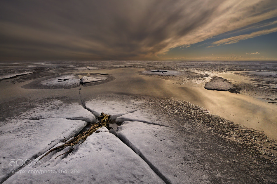 Photograph Awakening... by Pawel Kucharski on 500px
