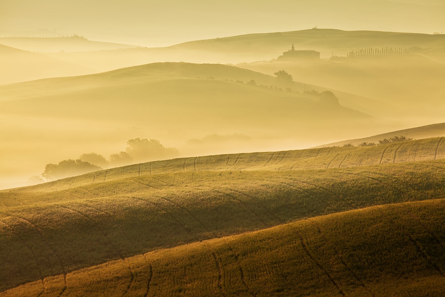Photograph Tuscan spring 3 by Daniel Řeřicha on 500px