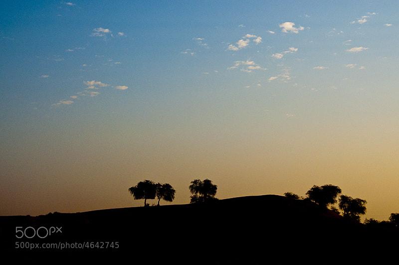 Photograph Morning by Raveesh Raveendranath on 500px