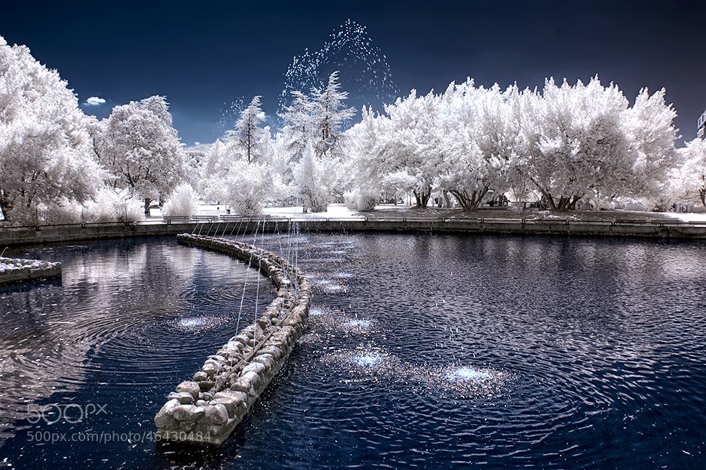 Photograph Eden_ infrared by Mario Cangelli on 500px