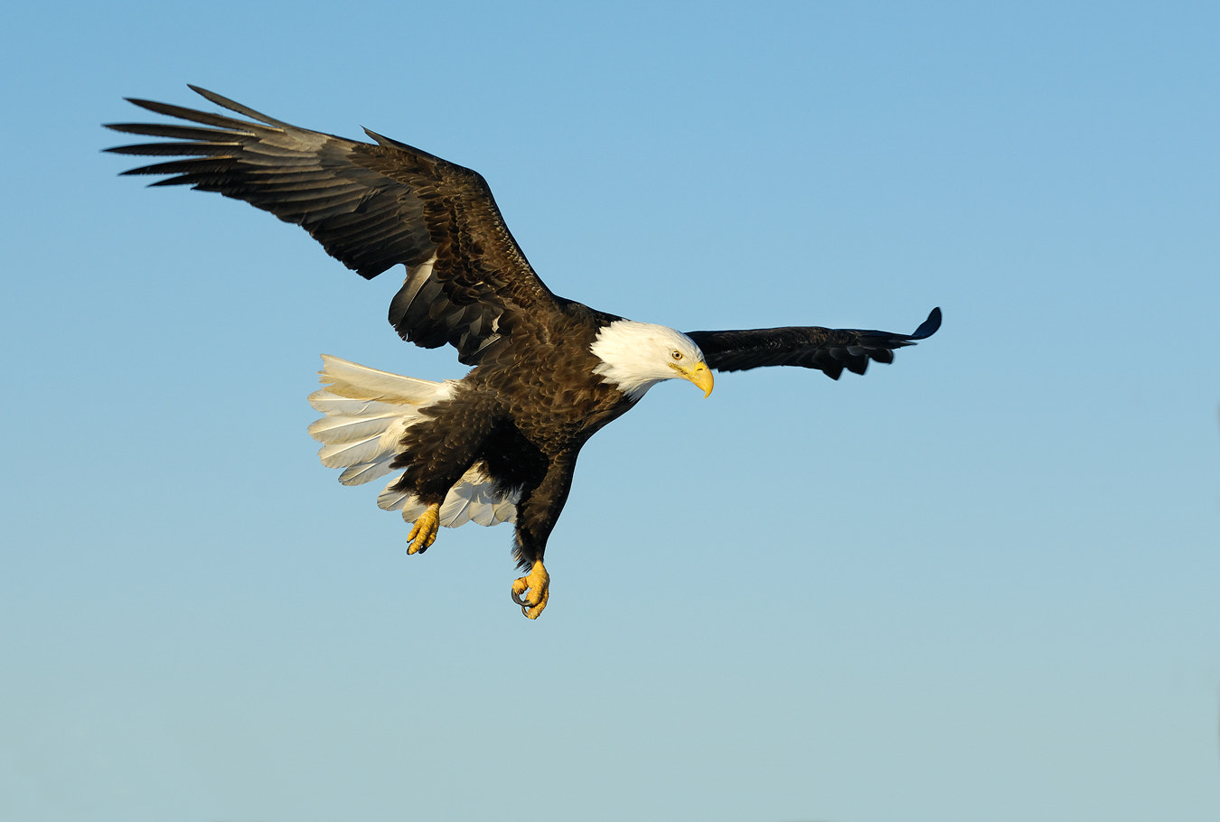 Photograph Coming by Harry  Eggens on 500px