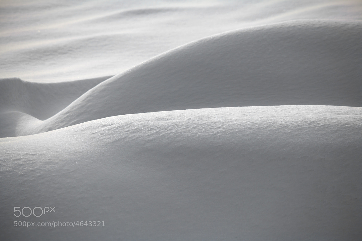 Photograph Erotic Winter by Laimonas Ciūnys on 500px
