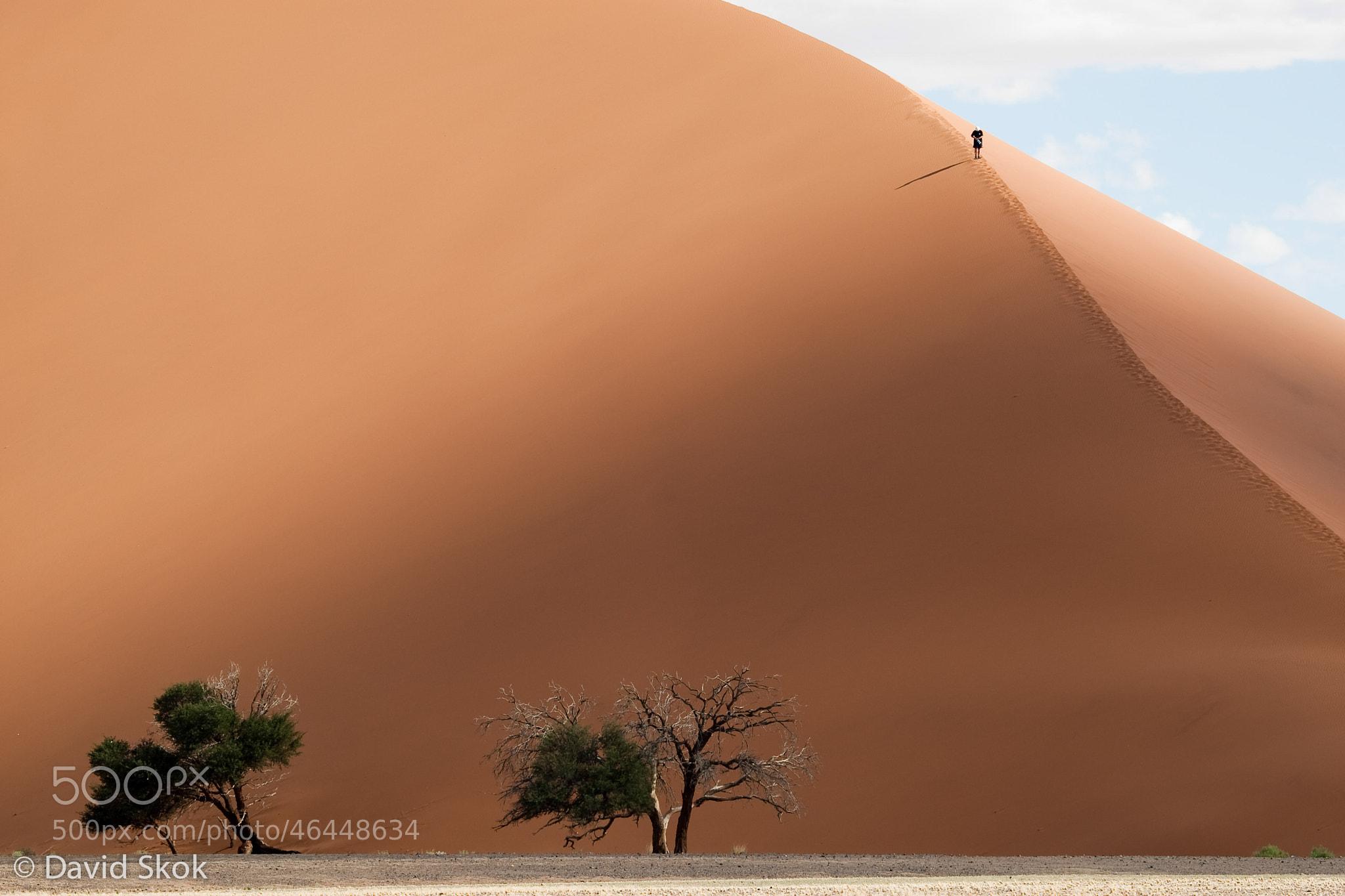 Sossusvlei Dune, Nambia