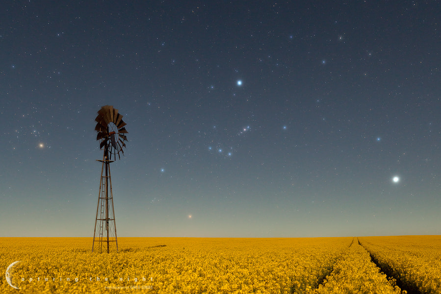 Photograph Field Of Dreams by Greg Gibbs on 500px