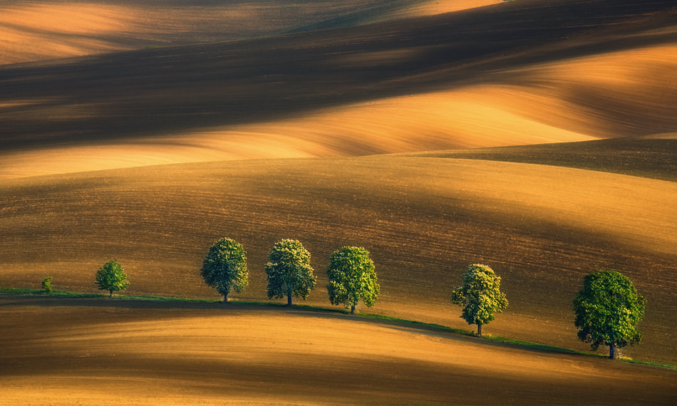 Photograph Seven... by Krzysztof Browko on 500px