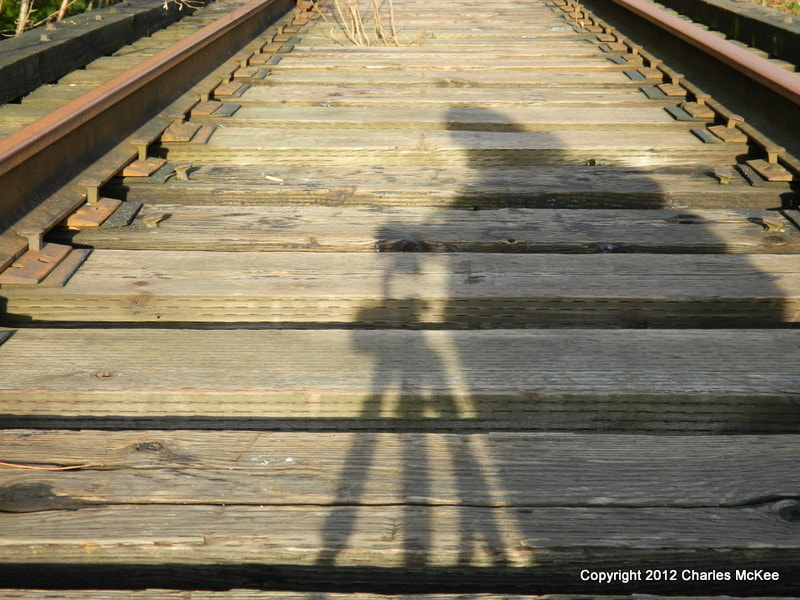 Photograph I caught my shadow by Charlie Mckee on 500px
