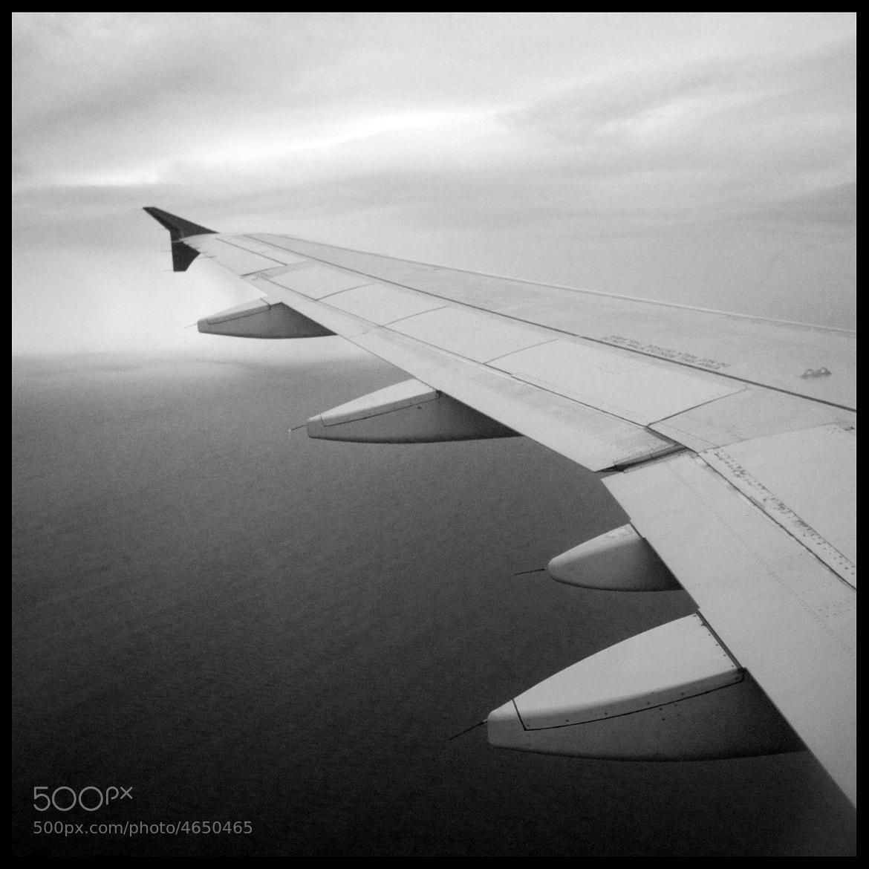 Photograph in flight again by David Ottavio on 500px