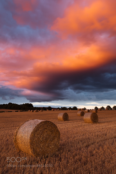 Photograph Haybales, Devon, England by Russell Pike on 500px