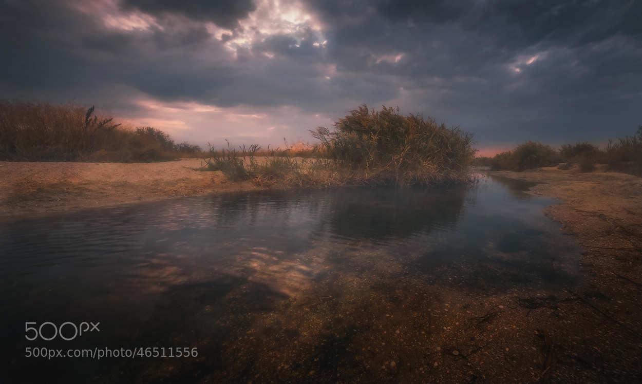 Photograph Untitafter the rainled by Vadim Shevchenko on 500px