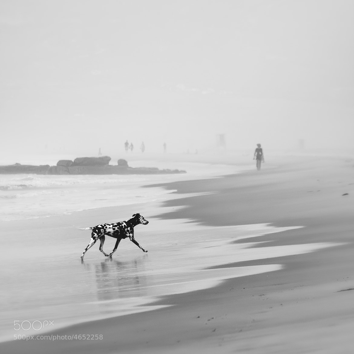 Photograph Looking for my 100 friends by stefan schmidt on 500px
