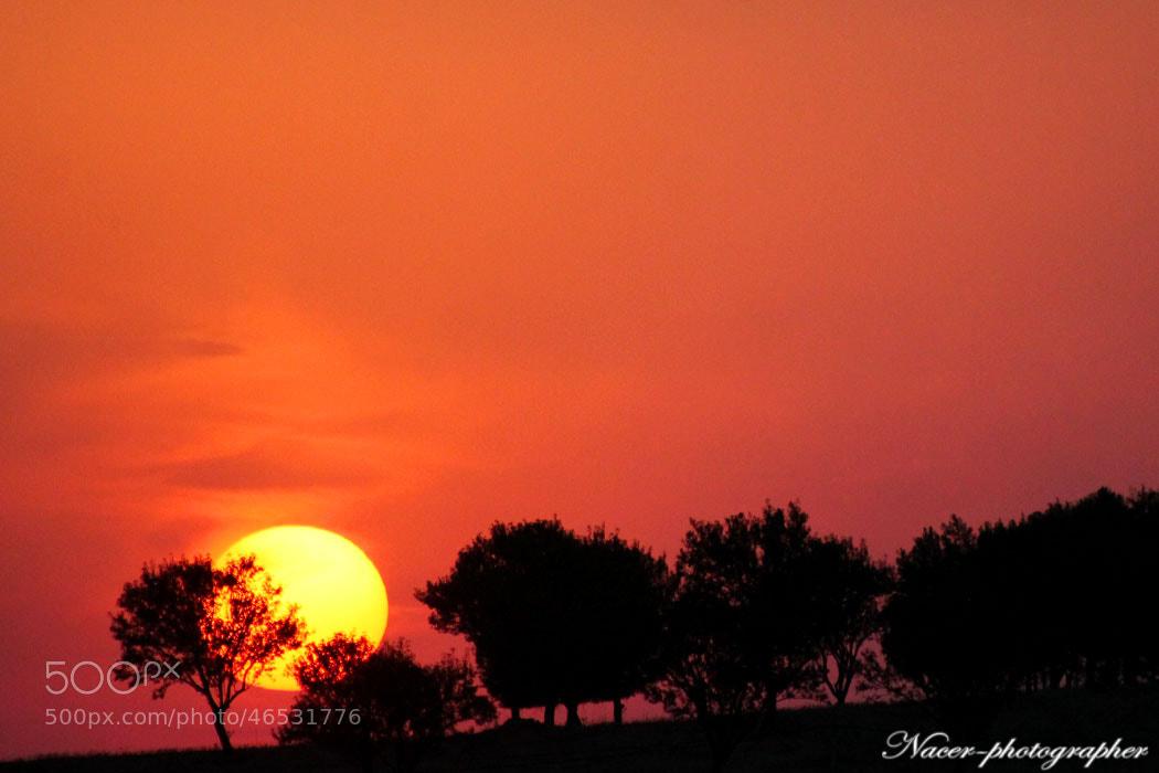 Photograph sunset by nacer zizo on 500px