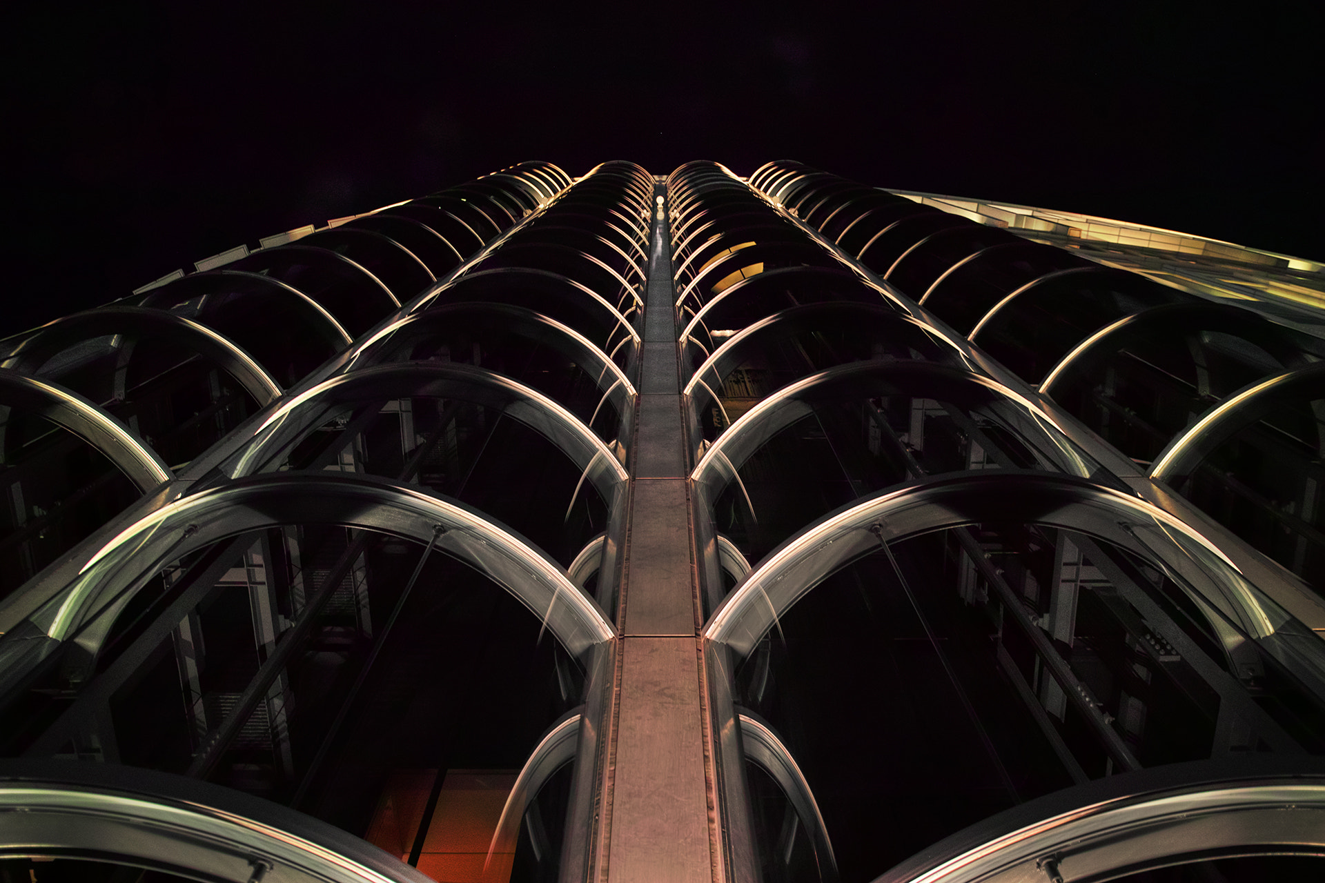Photograph Fishbone by Azul Obscura on 500px