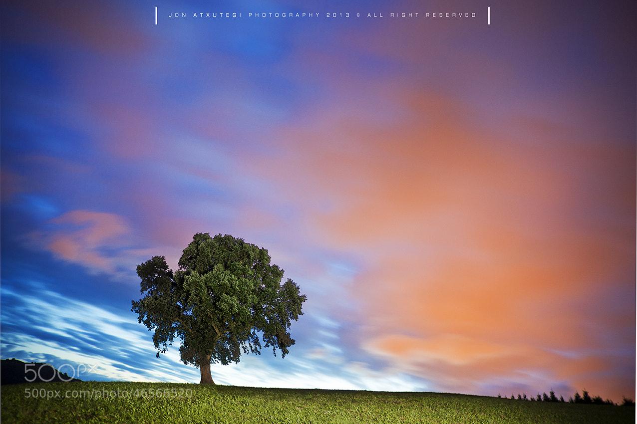 Photograph SUMMER DREAMS by Jontake . . on 500px
