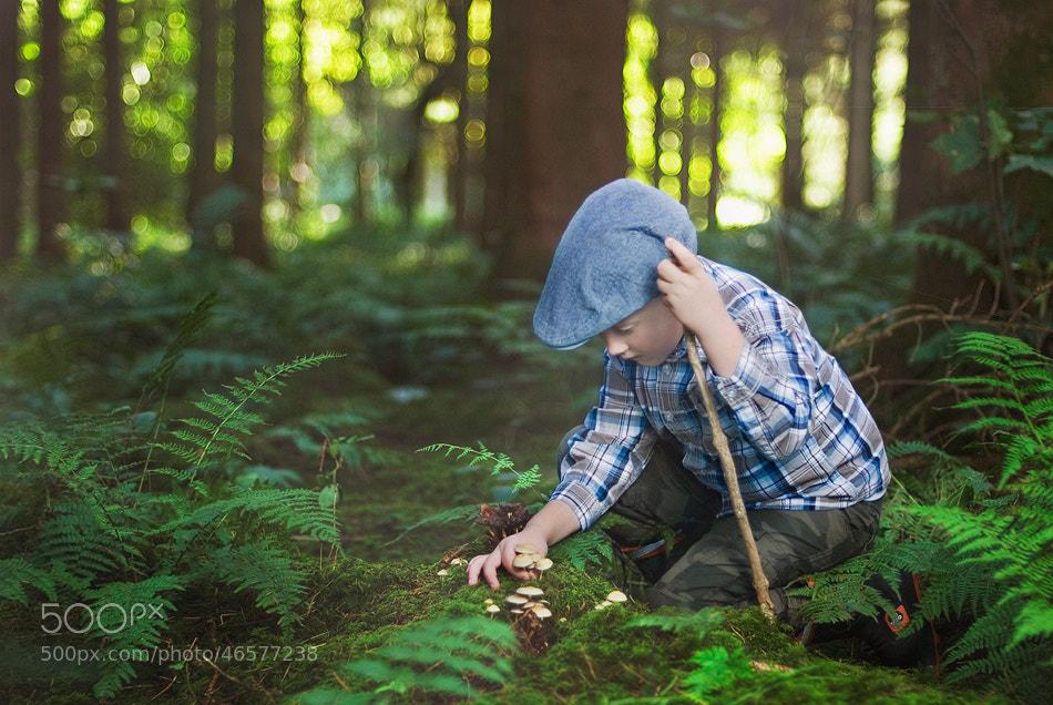Photograph Mushroom Picker by Lukasz Maksymiuk on 500px