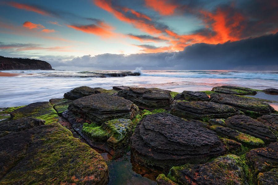 Photograph Spring break by Michael Thien on 500px