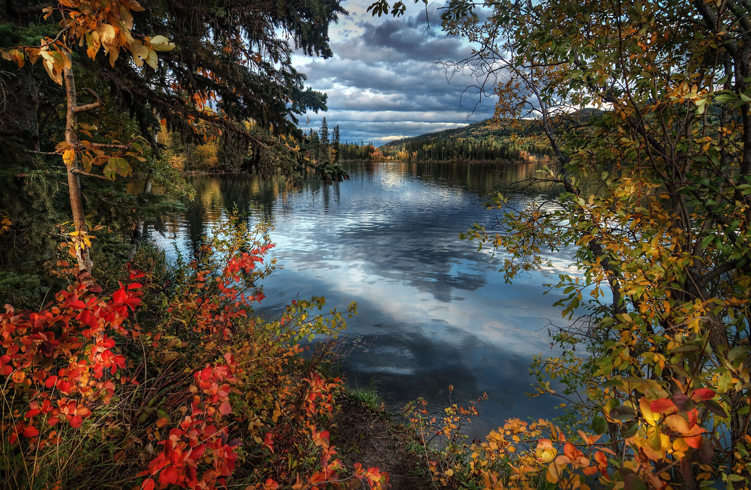Photograph Fall Colours by Bob Bittner on 500px