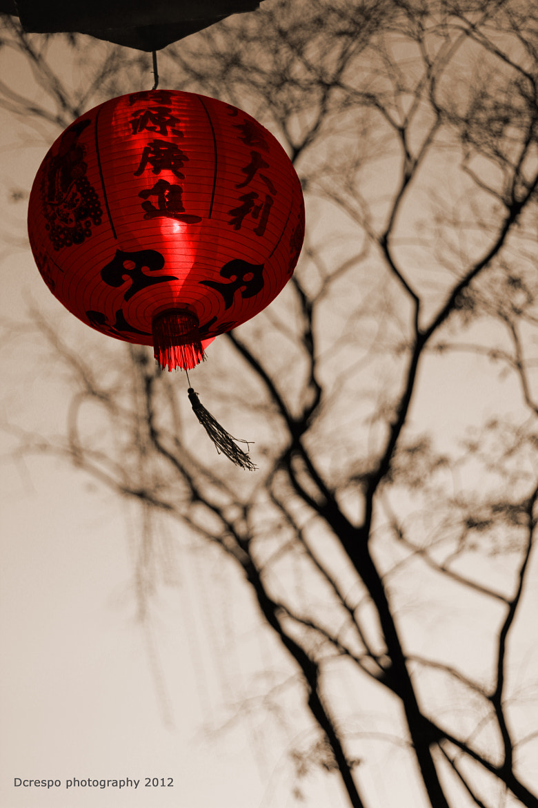 Photograph Chinese by Dennis Crespo on 500px